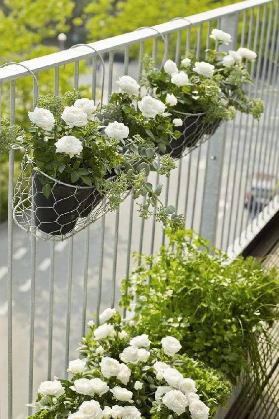 mẫu thiết kế ban công trồng hoa đẹp