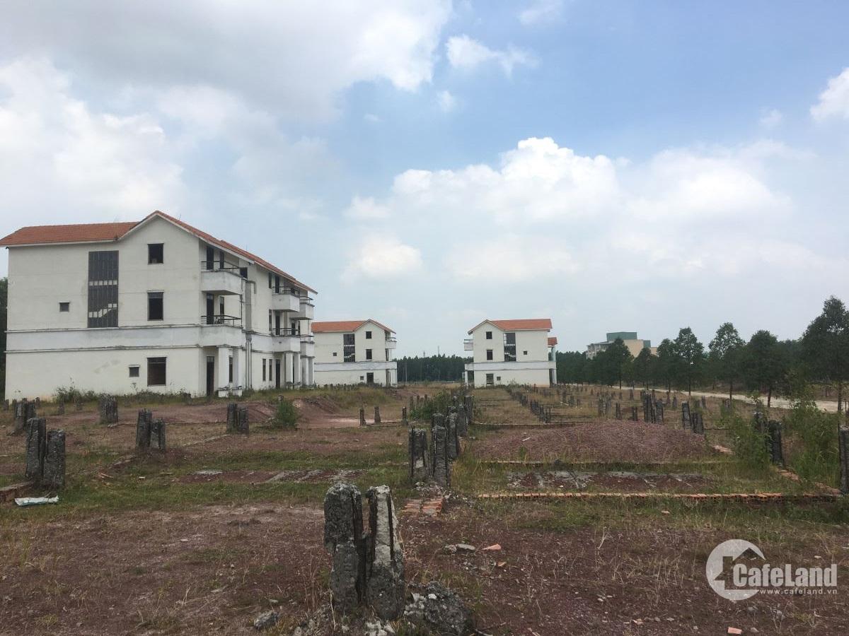Thị trường đất nền: Sài Gòn khan hiếm, Bình Dương nhộn nhịp